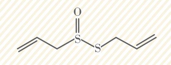 allicin-wie-wirkt-knoblauch-chemische-verbindung-
